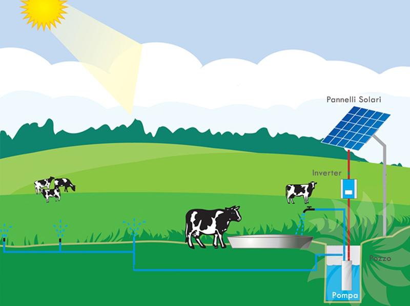 Pannello Solare Per Pompa Pozzo : Pompa pozzo a energia solare freewater